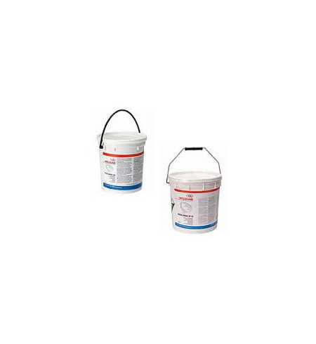 Decapante PICKLINOX G2 2 Kg